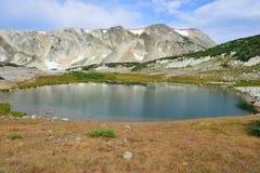 Alpint landskap i medicinpilbågebergen av Wyoming Royaltyfri Fotografi