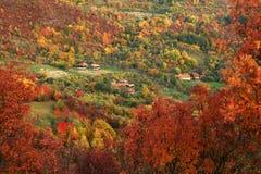 Alpint landskap i nationalparken Retezat Arkivfoto