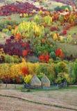 Alpint landskap i nationalparken Retezat Arkivfoton