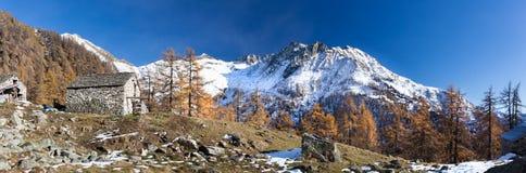Alpint landskap i nedgångsäsong Piemonte italienska fjällängar, Europa Arkivfoto