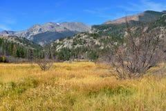 Alpint landskap i nedgångsäsongen Arkivfoto