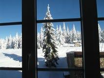 Alpint landskap i vinter under nytt att snöa snö royaltyfri fotografi