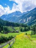 Alpint landskap med ängar och bergmaximumet Arkivfoton