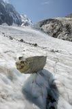 Alpint landskap med berg och glaciären Arkivfoto