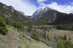 Alpint landskap, Sangre de Cristo Spänna, Rocky Mountains i Colorado Arkivbilder