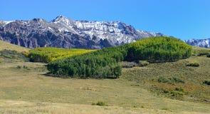 Alpint landskap under lövverksäsong Royaltyfri Foto