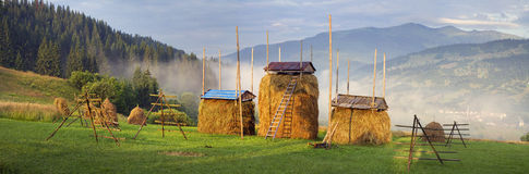 Alpint levebrödjordbruk Royaltyfri Foto
