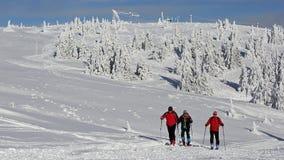 alpint turnera för skiers Arkivfoto