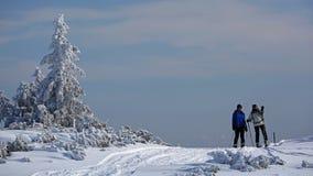 alpint turnera för skiers Arkivbilder