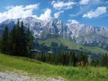 alpsösterrikaresikt Arkivfoto