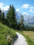 alpsösterrikaresikt Royaltyfri Foto