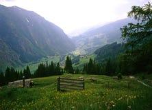 alps австрийские Стоковые Фотографии RF