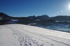 alps покрыли древесины зимы малого снежка места дома швейцарские Стоковые Изображения RF