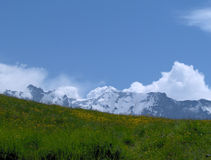 Alps. Nice shot of the Swiss Alps Royalty Free Stock Photography