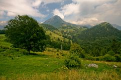 Alps. Lower point in slovenian alps with pastures Stock Photography