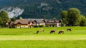 Alps, Austria Stock Photos