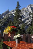 Alps Austria taras Fotografia Stock