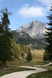 alps austriaccy Zdjęcie Stock