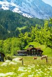 Alps background Royalty Free Stock Photo