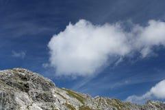 alps bavarian Obrazy Stock