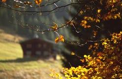 Alps cabin Stock Photo