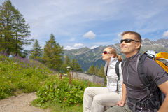 Alps Chamonix Royalty Free Stock Photo