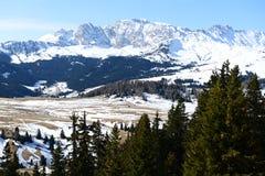 Alps di Siusi_1 Immagine Stock Libera da Diritti