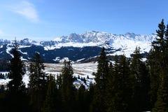 Alps di Siusi_2 Stock Images