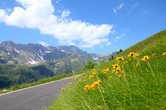 Alps in Italy royalty free stock photography