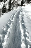 alps kroków pizol śniegu szwajcar Obraz Royalty Free