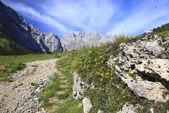 alps långt Arkivbilder