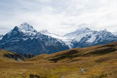 Alps landscape in the summer. Beautiful view of Swiss Alps peaks snow nature europe beauty tourism high mountain cold jungfrau sharpen rock extremely background royalty free stock photos
