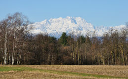 Alps monte rosa. Alps mountain Monte Rosa view Royalty Free Stock Photography