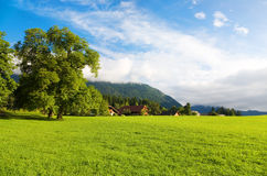 Alps morning landscape Royalty Free Stock Photography