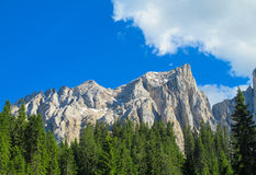 Alps mountain landscape in summer Royalty Free Stock Photos