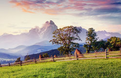 Alps mountain meadow tranquil summer view. Europe Royalty Free Stock Images