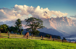 Alps mountain meadow tranquil summer view. Europe Stock Photos