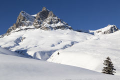 Alps, mountain range covered in the snow, winter royalty free stock images