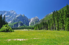 Alps mountain scenery. Friuli, Italy Royalty Free Stock Photo