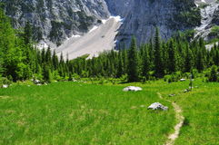Alps mountain scenery. Friuli, Italy Stock Photos