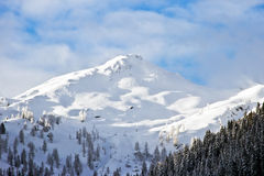 Alps mountain top. Snow covered mountain top in the Alps in Austria Stock Photography