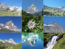 Alps mountains. Collage with Cervino Matterhorn mountain, waterfalls and Edelweiss flower Royalty Free Stock Photo