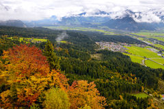 Alps Mountains and Forest Stock Photography