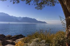 Alps mountains upon Geneva lake, Montreux, Switzerland. Alps mountains upon Geneva lake by beautiful day, Montreux, Switzerland royalty free stock image