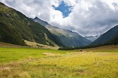 Alps mountains meadows Royalty Free Stock Photos