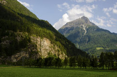 Alps mountains peak with green field Stock Photo