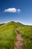 alps nad ścieżką Zdjęcia Royalty Free