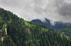 Alps near Mayrhofen. Tirol. Austria.  Royalty Free Stock Photo