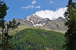 Alps. The peaks of the Italian Alps on the background of blue sky Royalty Free Stock Photo