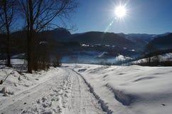 alps räknade trän för vintern för schweizare för snow för husplatsen lilla Royaltyfria Bilder